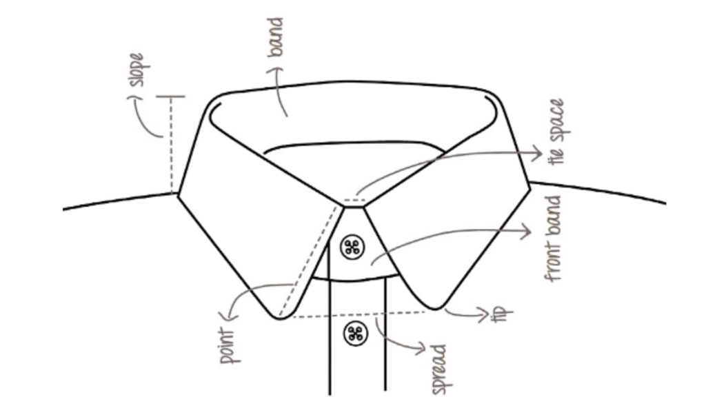 The main parts of a shirt collar.